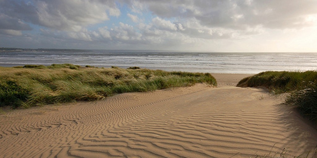 Braunton Burrows leading to Saunton Sands