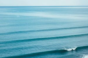 5 things you probably didn't know about surfing