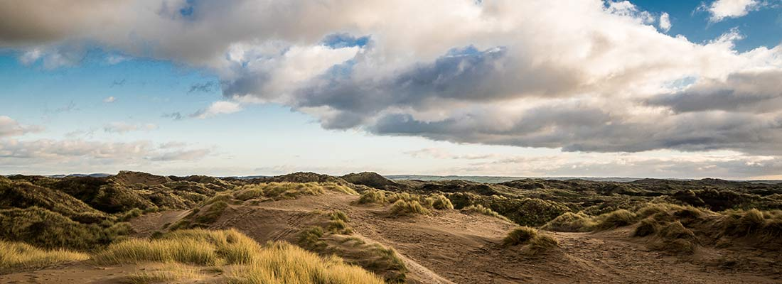 Braunton Burrows, Lobb Fields